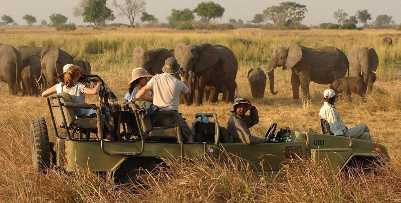Guia turístico com visitantes em passeio de safári - África do Sul