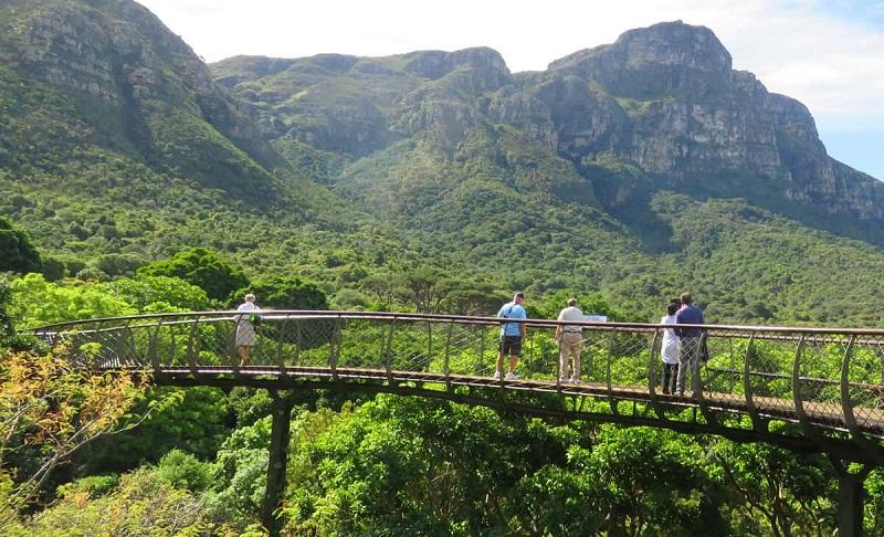 Pontos turísticos na Cidade do Cabo: Kirstenbosh Botanical Gardens