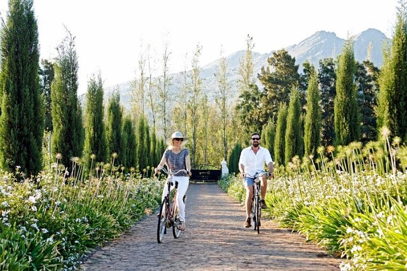 Passeios românticos na Cidade do Cabo: Vinícolas de Stellenbosch