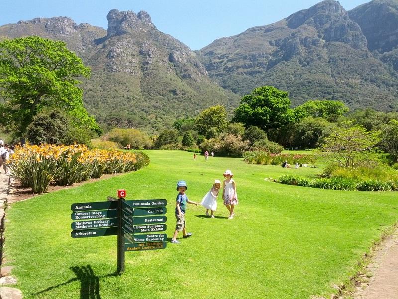O que fazer e encontrar no Kirstenbosch National Botanical Garden na Cidade do Cabo