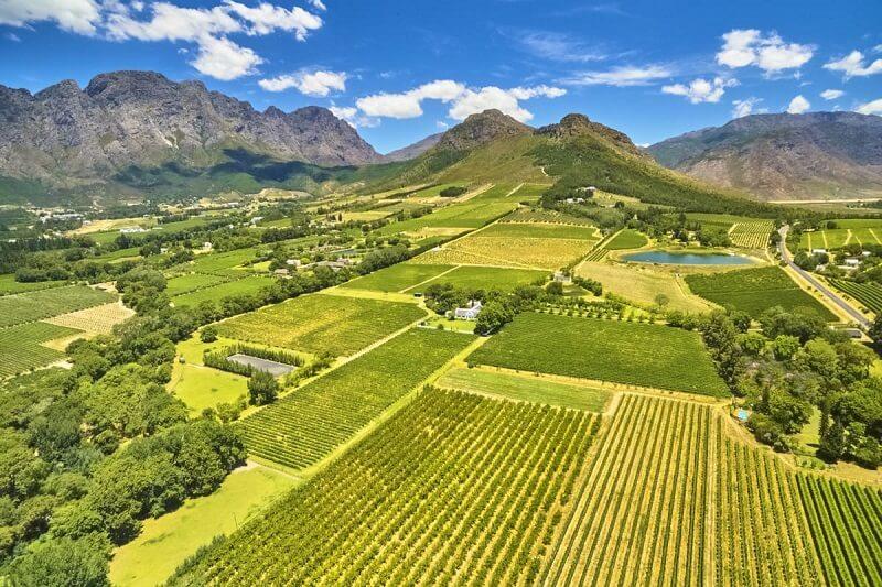 Passeio pelas vinícolas de Stellenbosch nas proximidades da Cidade do Cabo