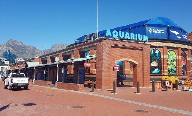 Two Oceans Aquarium na Cidade do Cabo