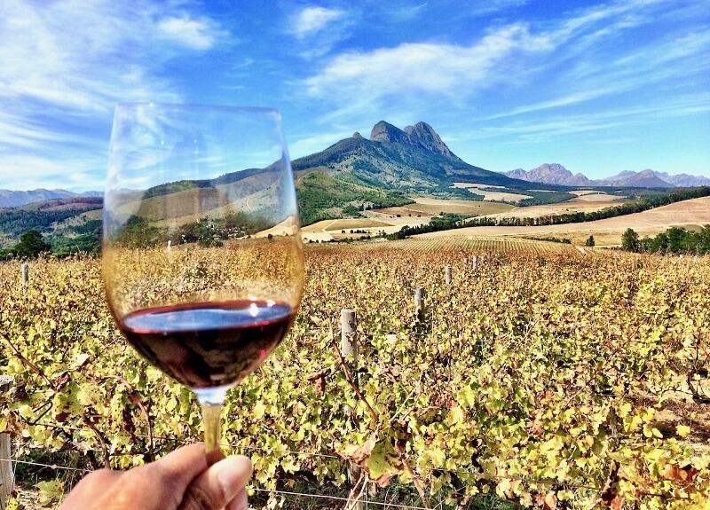 Vinícola de Stellenbosch na África do Sul