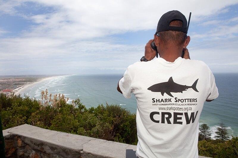 Shark Spotters na Muizenberg Beach