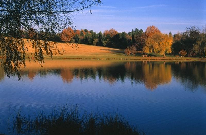 Lago no Jardim Botânico de Joanesburgo