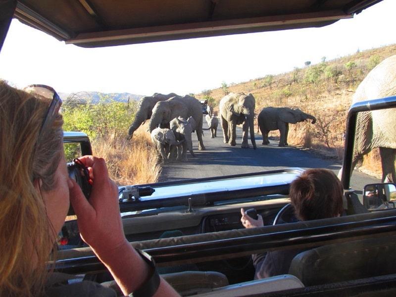 Turistas no Pilanesberg National Park