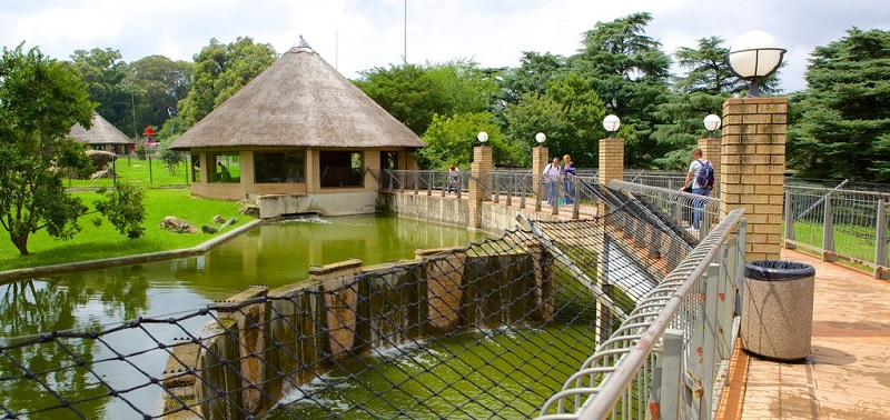 Johannesburg Zoo em Joanesburgo