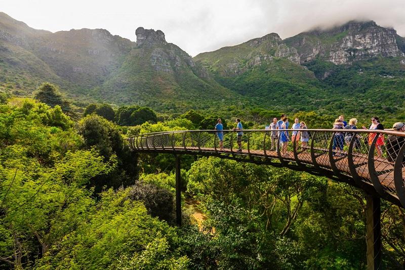 Kirstenboch Botanical Garden na Cidade do Cabo
