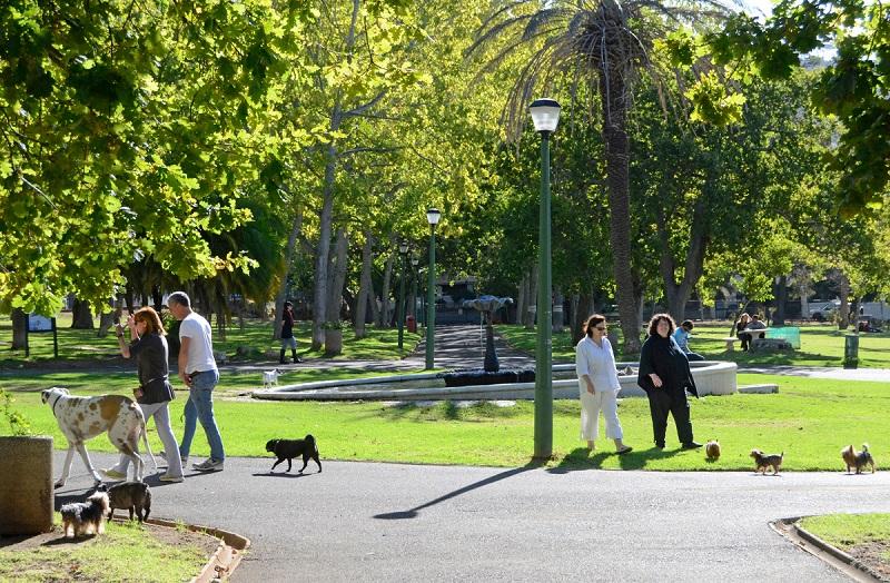 Pessoas em parque na Cidade do Cabo