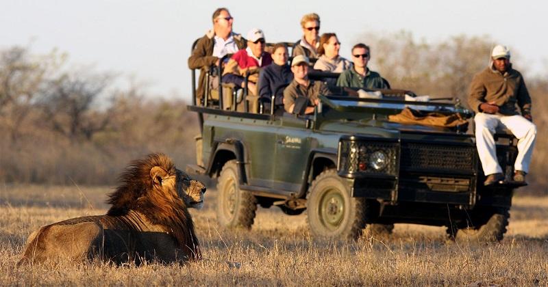 Passeio de safári na África do Sul