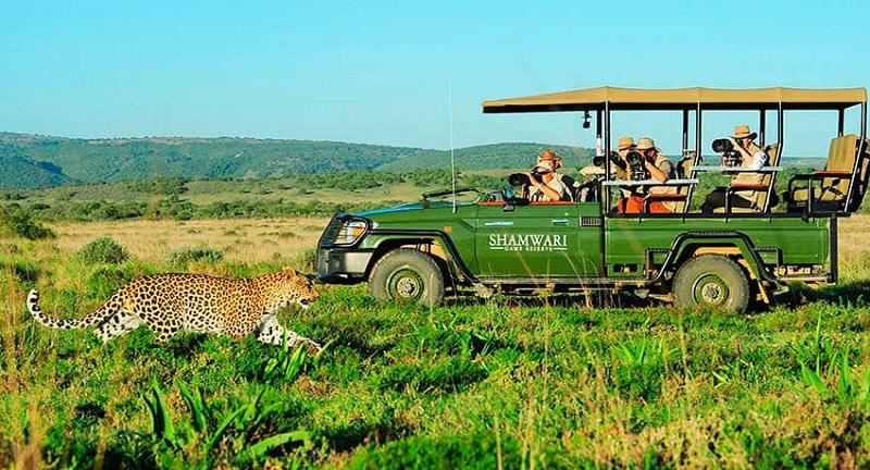 Passeio em Sanbona Wildlife Reserve - Cidade do Cabo