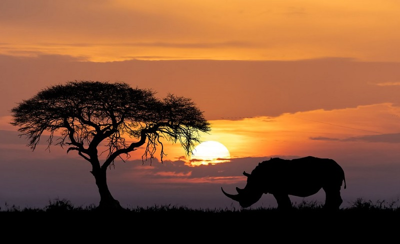 Sunset - África do Sul
