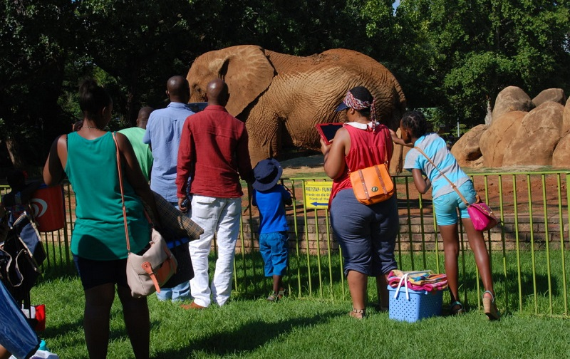 Zoológico Nacional Gardens em Pretória
